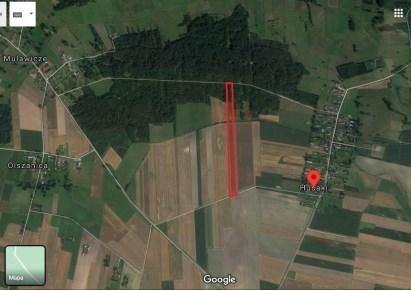 земельный-участок для продажи - Wyszki, Mulawicze